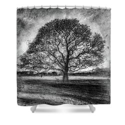 Hagley Tree 2 Shower Curtain
