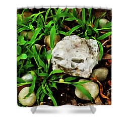 Haight Ashbury Smiling Rock Shower Curtain