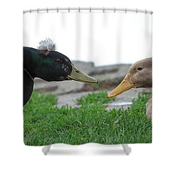 Hairdo Faceoff Shower Curtain