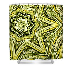 Shower Curtain featuring the digital art Hakone Grass Kaleido by Peter J Sucy