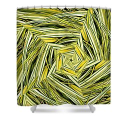 Hakone Pinwheel Shower Curtain