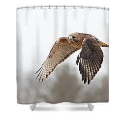 Hal Takes Flight Shower Curtain