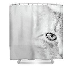 Half Cat Shower Curtain