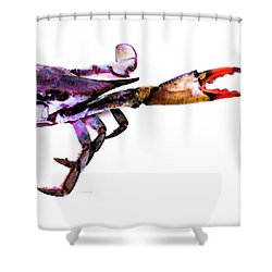 Half Crab   The Right Side Shower Curtain