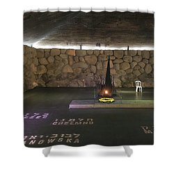 Hall Of Remembrance Shower Curtain