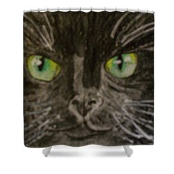 Shower Curtain featuring the painting Halloween Black Cat I by Kathy Marrs Chandler