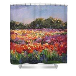 Hamilton Dahlia Farm Shower Curtain