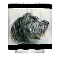 Shower Curtain featuring the pastel Hamish The Wolfhound by MM Anderson