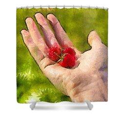 Hand And Raspberries - Da Shower Curtain