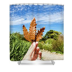 Hand Holding A Beautiful Oak Leaf Shower Curtain