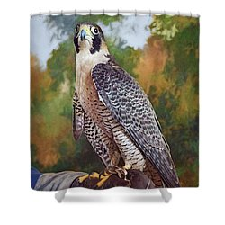 Shower Curtain featuring the photograph Hand Of The Falconer by Nikolyn McDonald