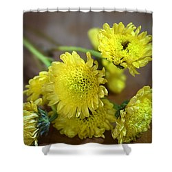 Handful For You Shower Curtain by Deborah  Crew-Johnson
