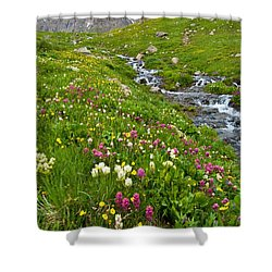 Shower Curtain featuring the photograph Handie's Peak And Alpine Meadow by Cascade Colors