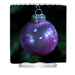 Handpainted Ornament 002 Shower Curtain