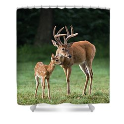 Shower Curtain featuring the photograph Hands On Dad by Andrea Silies