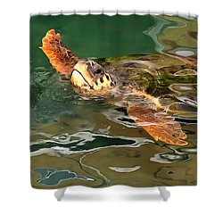 Hands Up For A Plastic Free Ocean Loggerhead Turtle Shower Curtain