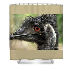 Handsome Shower Curtain by Kaye Menner
