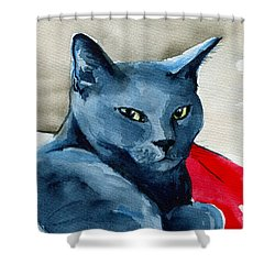 Handsome Russian Blue Cat Shower Curtain