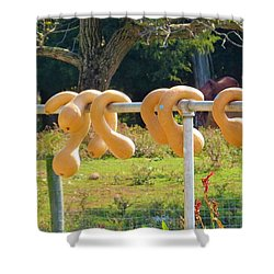 Hang In There Shower Curtain by Jeanette Oberholtzer