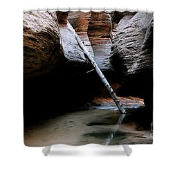 Shower Curtain featuring the photograph Hanging By A Moment by Brandy Little