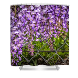 Hanging On The Fence, Wisteria Shower Curtain