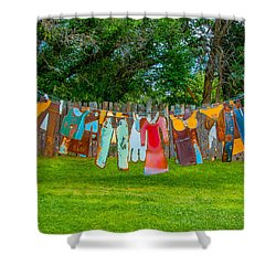 Hanging Out... Shower Curtain by Carolyn Dalessandro