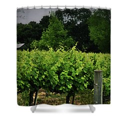 Hanging Out In The Vineyards Shower Curtain