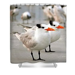 Hanging Out On The Beach Shower Curtain