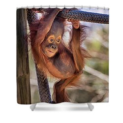 Hanging Out Shower Curtain by Stephanie Hayes