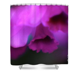Hanging Purple Tropical Flowers Up Close- Kauai- Hawaii Shower Curtain