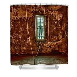 Hanging Room Shower Curtain