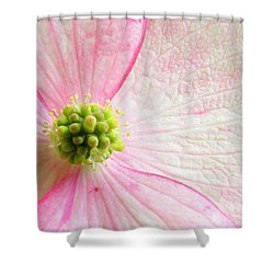 October Is Squish The Girls Month Shower Curtain