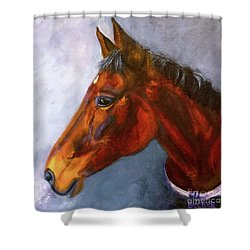 Hanoverian Bay Shower Curtain