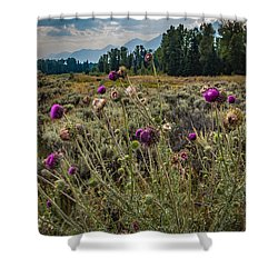 Shower Curtain featuring the photograph Happier In The Mountains by Cathy Donohoue