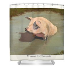 Happiness And Standards Shower Curtain