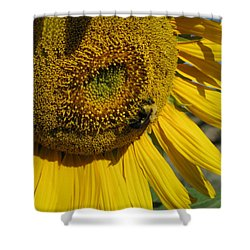 Happy Bumble Bee Shower Curtain