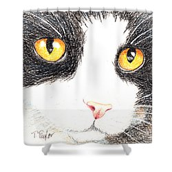 Happy Cat With The Golden Eyes Shower Curtain