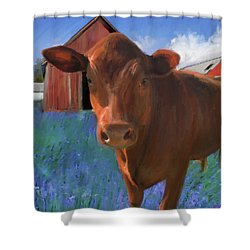 Happy Cow West Marin  Shower Curtain