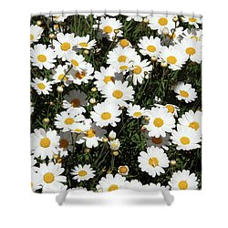 Happy Daisies- Photography By Linda Woods Shower Curtain