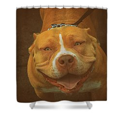 Happy Shower Curtain by Dennis Baswell