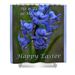 Shower Curtain featuring the photograph Happy Easter Hyacinth by Ann Bridges