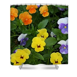 Shower Curtain featuring the digital art Happy Faces by Barbara S Nickerson