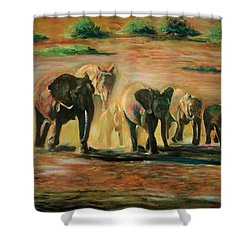Happy Family Shower Curtain by Khalid Saeed