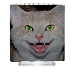 Happy For Spring Cat Shower Curtain