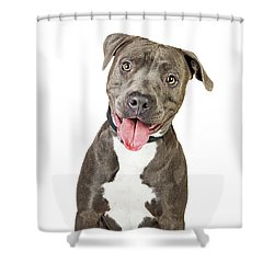 Happy Friendly Smiling Pit Bull Dog  Shower Curtain