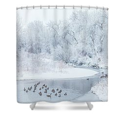 Shower Curtain featuring the photograph Happy Geese by Darren White