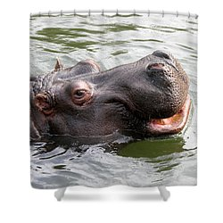 Happy Hippo Shower Curtain