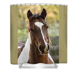 Happy Horse Shower Curtain