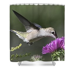 Shower Curtain featuring the photograph Happy Hour by Stephen Flint