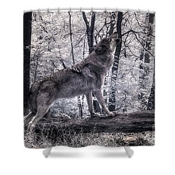 Happy Howlidays Shower Curtain by William Fields